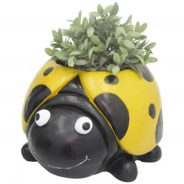 H37cm Ladybird Frost Proof Polyresin Planter in Yellow