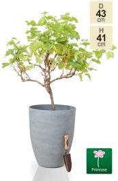 H41cm Volcanic Grey Cone Planter - By Primrose™