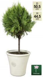 H44.5cm Smokey Cream Round Tuscan Planter - By Primrose™