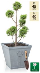 H40cm Vintage Continental Grey Square Planter - By Primrose®