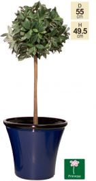 55cm Royal Blue Cone Planter - By Primrose™