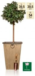 54cm Rustic Wood Effect Flared Square Planter - By Primrose®