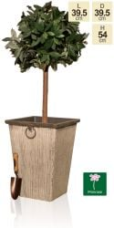 54cm Aged Grey Wood Effect Flared Square Planter - By Primrose®
