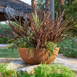 55cm Aged Rust Effect Bowl Planter - By Primrose™