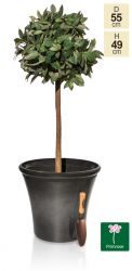 55cm Carbon Glaze Effect Bowl Planter - By Primrose™