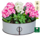 54cm Walton Vintage Zinc Low Planter by Primrose™