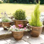 Bronze Antique-Style Wenlock Planters - Set of 4