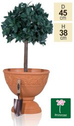 45cm Set of 2 Roman Urn Planters in Terracotta by Primrose®