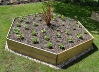 Wooden Timber Raised Hexagon Grow Bed Single Tier - 15cm x 120cm