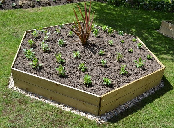 Wooden Timber Raised Hexagon Grow Bed Single Tier - D240cm (H15cm)