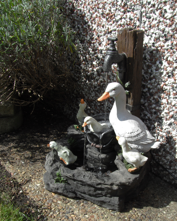 Duck Family at Tap Water Feature with LED Lighting