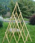 Obelisks & Conical Plant Support