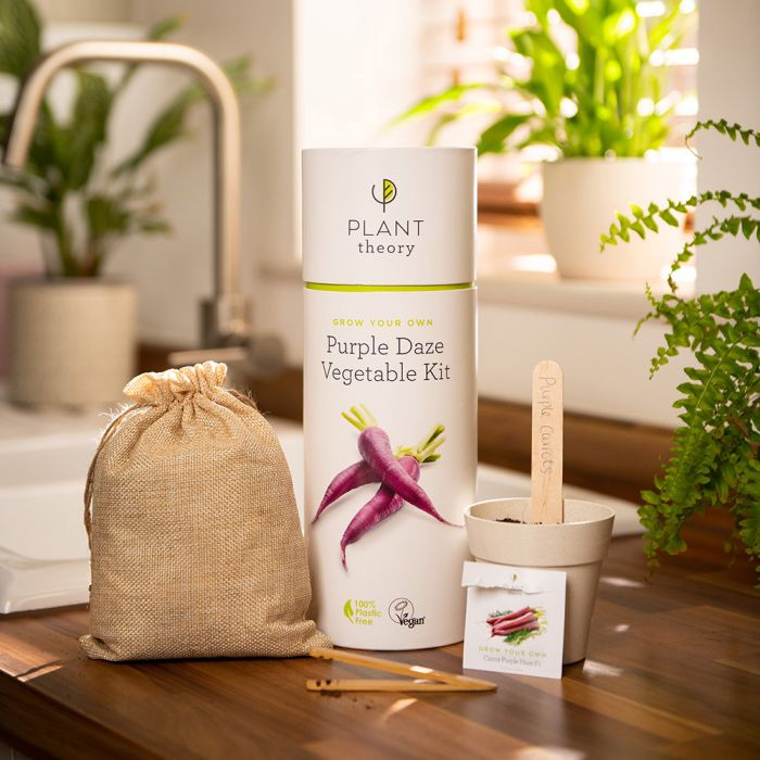 Grow Your Own Purple Daze Veg Kit | By Plant Theory