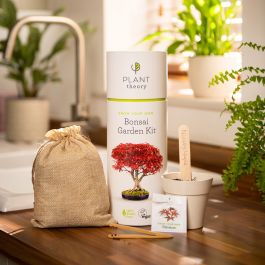 Grow Your Own Bonsai Kit | By Plant Theory