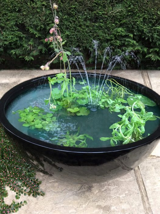 Sun Loving Black Pond-in-a-Pot Water Feature 72cm