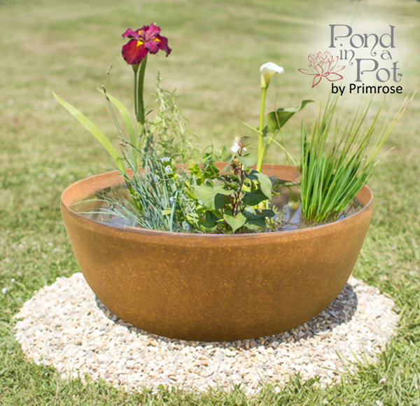 Wildlife friendly pond in a pot kit with 55cm aged rust for Pond friendly plants