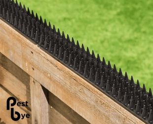 Fence and Wall Spikes - Black - Cat Repellent Security Spikes by PestBye®