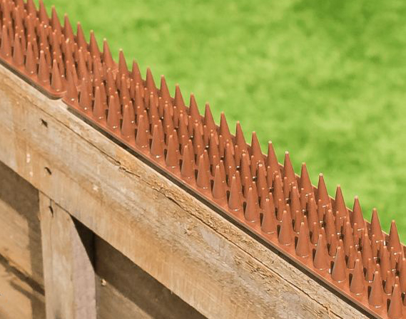 Fence And Wall Spikes Brown Cat, Flexible Garden Fence Strips