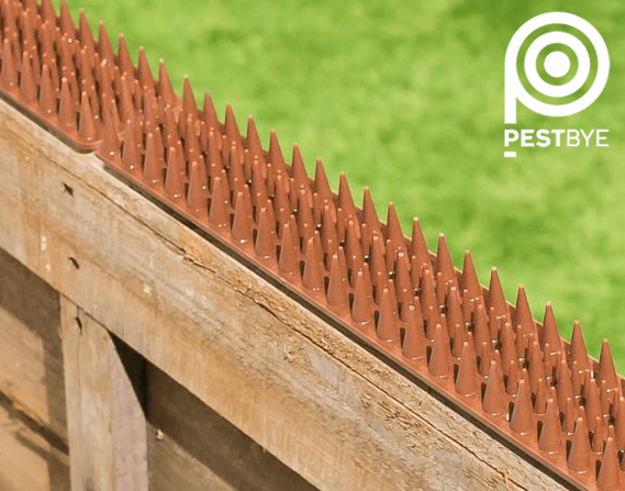 Fence and Wall Spikes - Brown - Cat Repellent Security Spikes by PestBye®