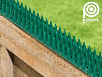 Fence and Wall Spikes - Green
