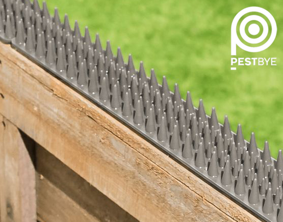 Fence and Wall Spikes - Grey - Cat Repellent Security Spikes by PestBye®