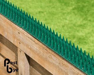 Fence and Wall Spikes - Green - Cat Repellent Security Spikes by PestBye®