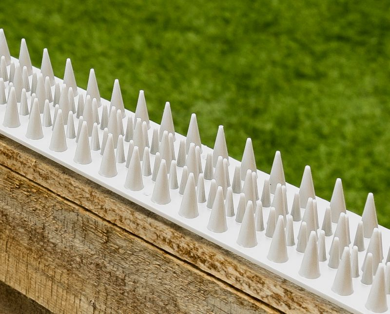 Fence And Wall Spikes White Cat Repellent Security