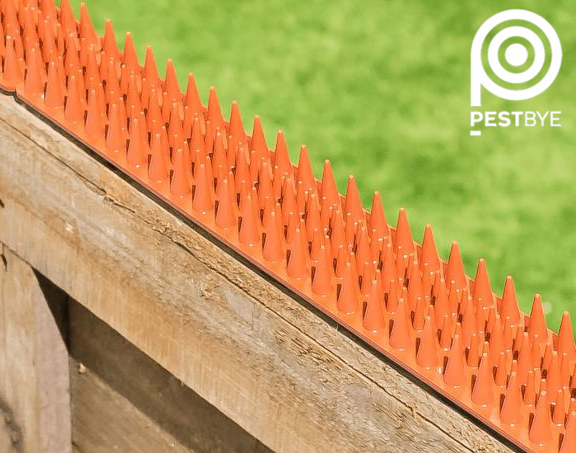 Fence and Wall Spikes - Terracotta - Cat Repellent Security Spikes by PestBye®