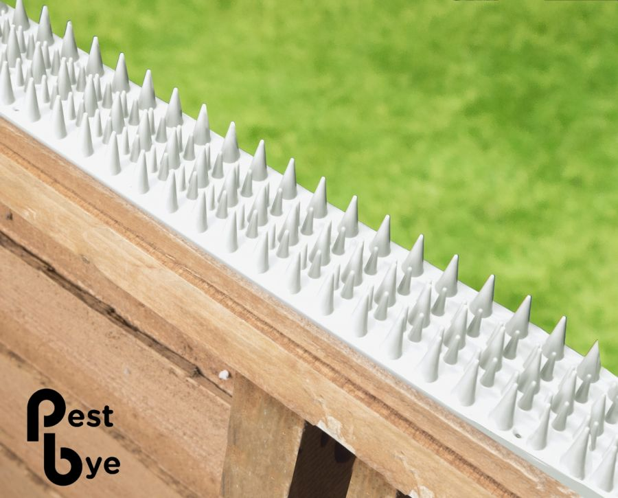 Fence and Wall Spikes - White - Cat Repellent Security Spikes by PestBye®