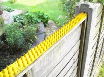 Fence and Wall Spikes - Yellow