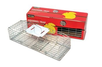 Procter Pest-Stop Squirrel Trap