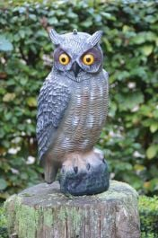 Owl Decoy - 40cm (1ft 3in)