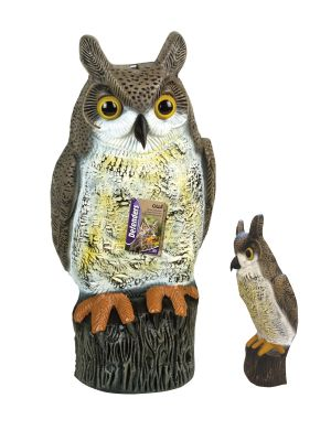 Owl Decoy