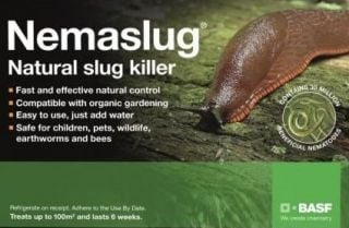 Nemaslug Natural Slug Killer 100 sqm