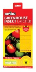 Greenhouse Insect Catcher Traps