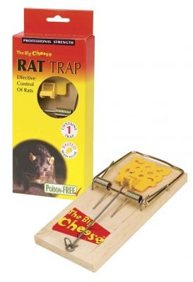 The Big Cheese Pre-Baited Rat Trap