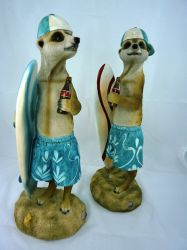 Pair Of Surfing Meerkats