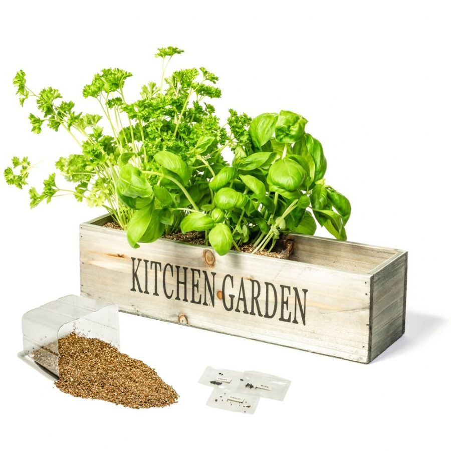 Kitchen Window Herb Planter: Kitchen Herb Garden Windowsill Planter With Seeds And