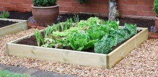 Timber Grow Bed - 1.2m x 1.2m