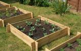 270 Litres - The Chamberlain Wooden Raised Grow Bed by Lacewing™ - 100cm² (H27cm)