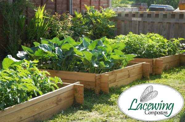 200 Litres - The Chamberlain Wooden Raised Grow Bed by Lacewing™ - 100cm² (H20cm)