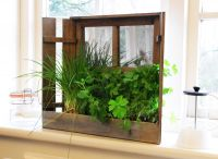 Shabby Chic Window Herb Mirror Planter Kit with Seeds