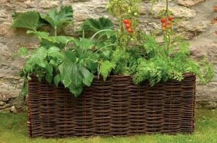 Natural Willow Vegetable Planter