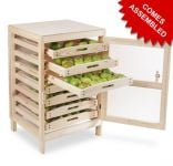 Traditional Apple Storage Rack - 7 Drawers H91cm x W58.5cm x D53cm by Lacewing�