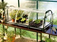 2ft x 4ft 3in Jumbo Propagator without Heat Mat