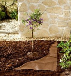 Bio Green Bio Mulch Fleece 3m x 10m