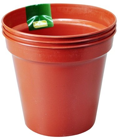 "15cm (6"") Pack of 3 Plant Pots"