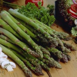 5 x Asparagus Backlim Bare Root