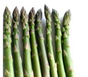 5 x Asparagus Pacific 2000 Bare Root