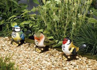 Smart Solar Bird Spotlight (3 Pack)